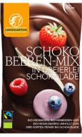 Bio Schoko-Beeren Mix - glutenfrei