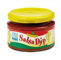 Salsa Dip - glutenfrei