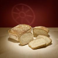 Bio Mais-Hirse frisch gebacken - glutenfrei