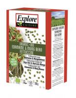 Bio Fettuccine aus Edamame- und Mungbohnen - glutenfrei
