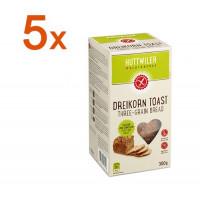 Sparpaket 5 x Dreikorn Toast - glutenfrei