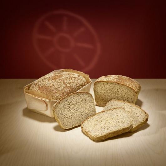 Bio Mais-Hirse frisch gebacken